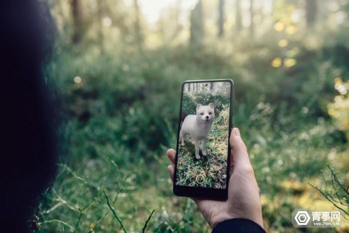 与瑞典自然保护协会合作,谷歌搜索AR新增5种濒危物种